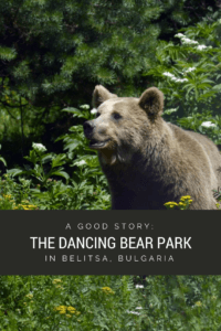 Bulgaria Bear Sanctuary
